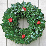 Green English Holly Wreath